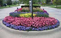 Flower Bed Installations